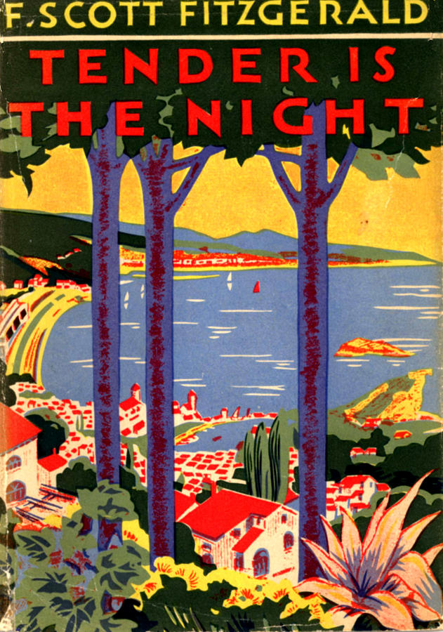 tender is the night essay For instance, in the cambridge companion, there is only one essay (by j west)   the novelist's most famous books, the great gatsby and tender is the night,.